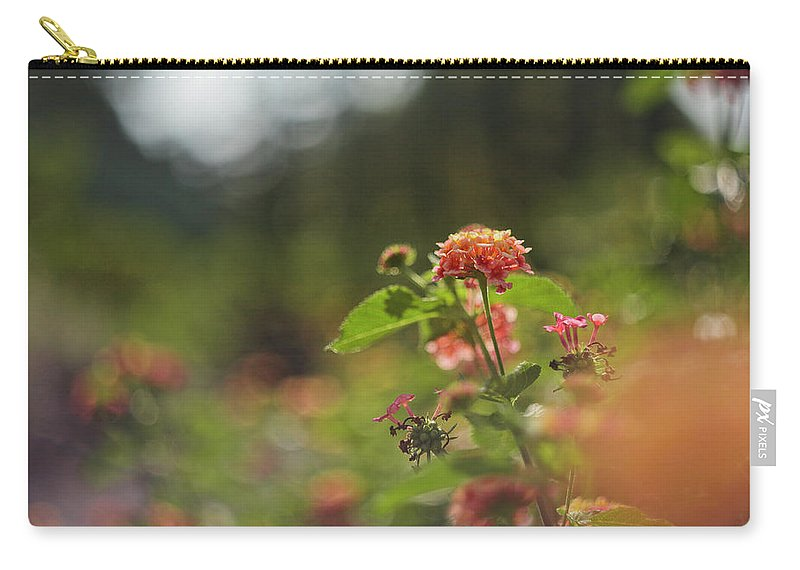 Summer Carry-all Pouch featuring the photograph Summer Glory by Sarah Morgan