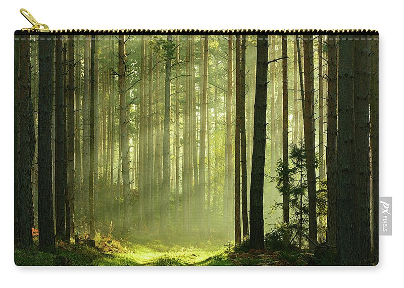 Scenics Carry-all Pouch featuring the photograph Sunbeams Breaking Through Pine Tree by Avtg