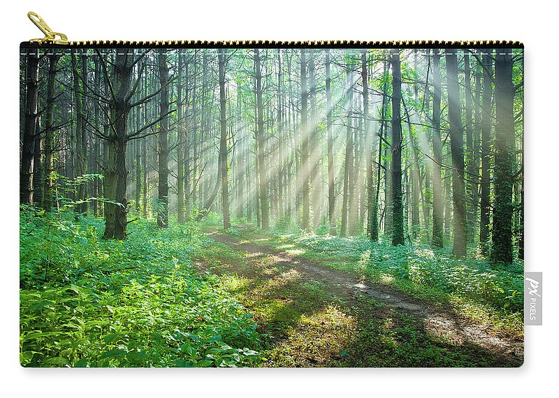 Outdoors Carry-all Pouch featuring the photograph Sunbeams Filtering Through Trees On A by Drnadig