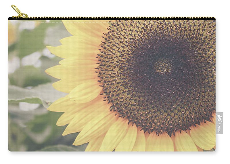 Sunflower Carry-all Pouch featuring the photograph Sunflower Haze by Colleen Kammerer