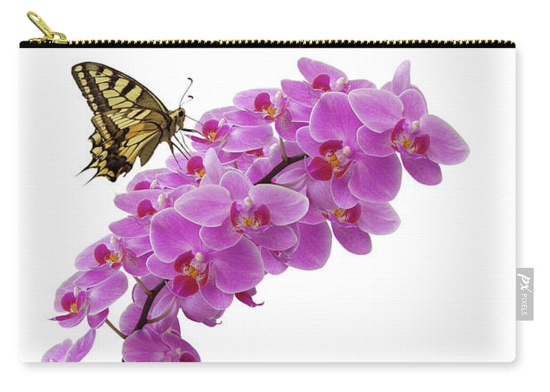 White Background Carry-all Pouch featuring the photograph Swallowtail Butterly On Orchid by Photographerolympus