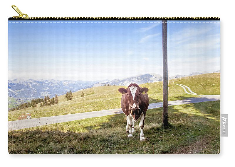 Swiss Cow Carry-all Pouch featuring the photograph Swiss Cow by Mark Stastny