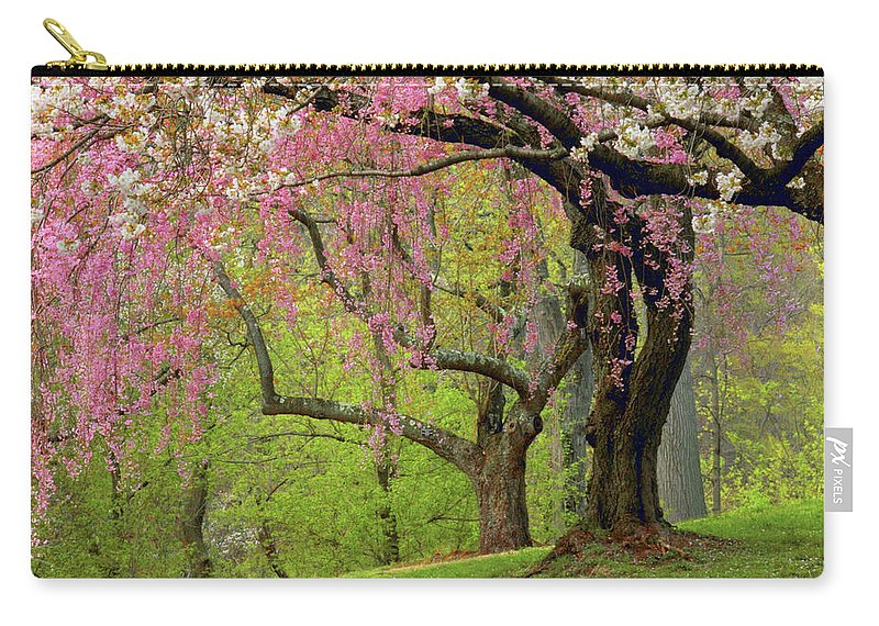 Cherry Trees Carry-all Pouch featuring the photograph Cherry Hillside Grove by Jessica Jenney