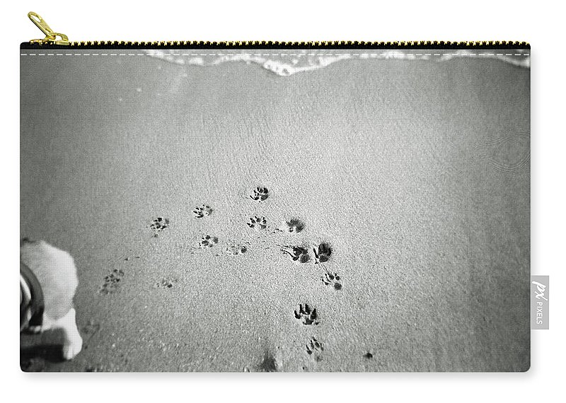 Pets Carry-all Pouch featuring the photograph The Beach by Moaan
