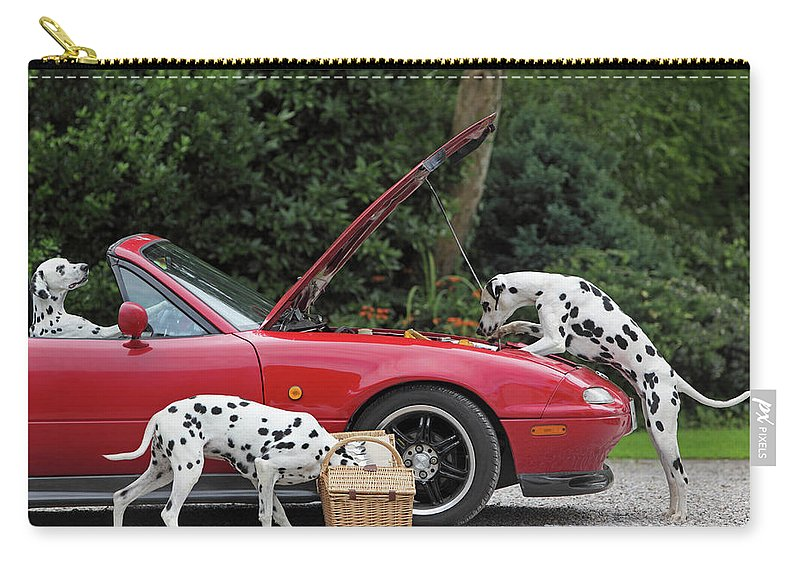 Pets Carry-all Pouch featuring the photograph Three Dalmatians Around Red Sports Car by Peter Cade