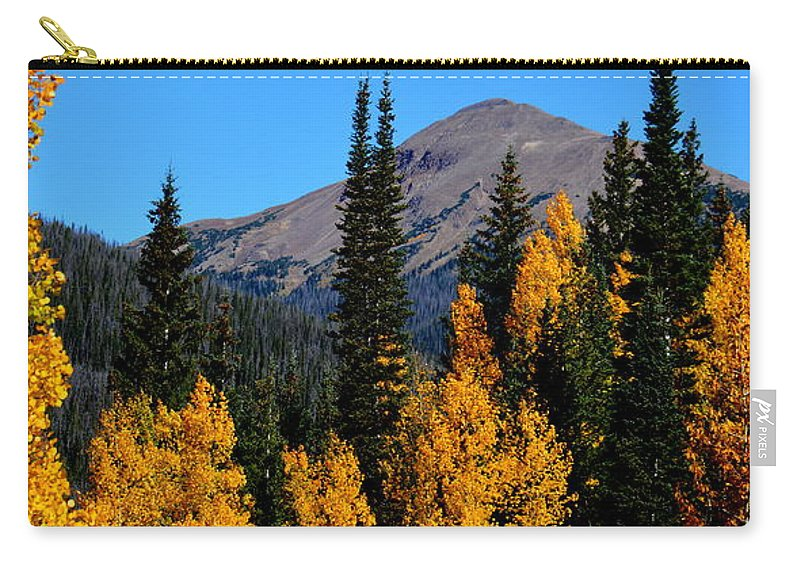 Fall Carry-all Pouch featuring the photograph Thunder Mountain Aspens by Brian Goodbar
