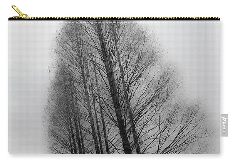 Tranquility Carry-all Pouch featuring the photograph Trees In Winter Without Leaves by Marie Hickman