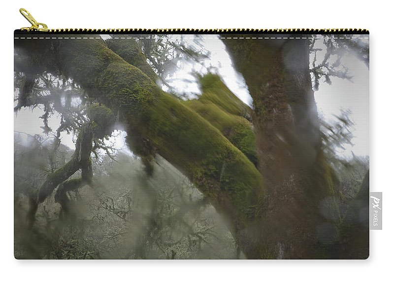 Horror Carry-all Pouch featuring the photograph Trees Through Car Windshield In Rain by Diane Miller