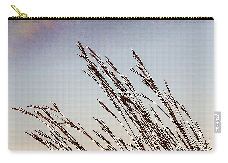 Turkey Foot Carry-all Pouch featuring the photograph Turkey Foot Grass At Sunset by Mary Pille
