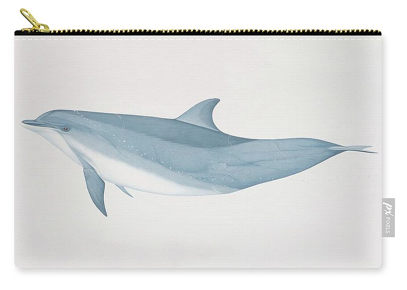 White Background Carry-all Pouch featuring the digital art Tursiops Truncatus, Bottlenose Dolphin by Martin Camm