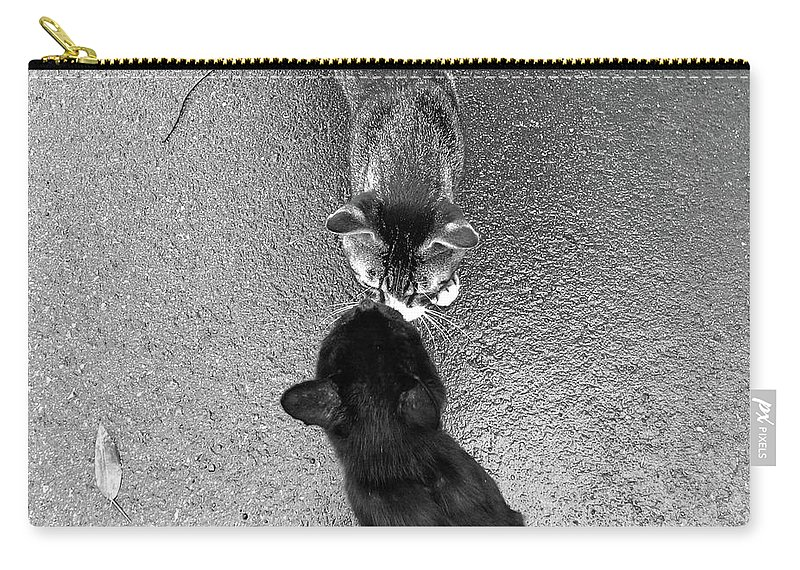 Pets Carry-all Pouch featuring the photograph Two Kittens Which Kiss by Photographer, Loves Art, Lives In Kyoto