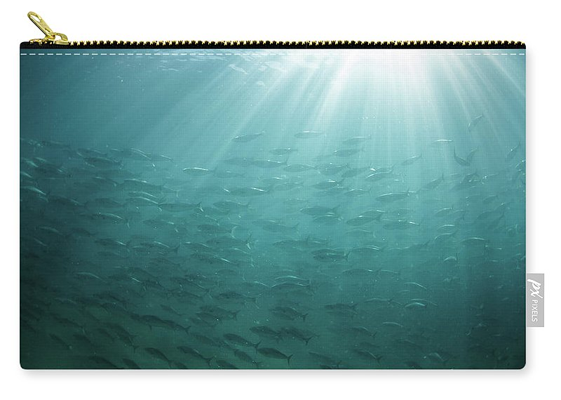 Freedom Carry-all Pouch featuring the photograph Underwater Light by Mark Tipple