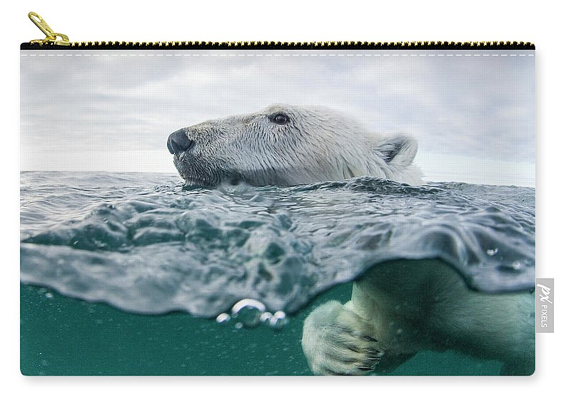 Paw Carry-all Pouch featuring the photograph Underwater Polar Bear In Hudson Bay by Paul Souders