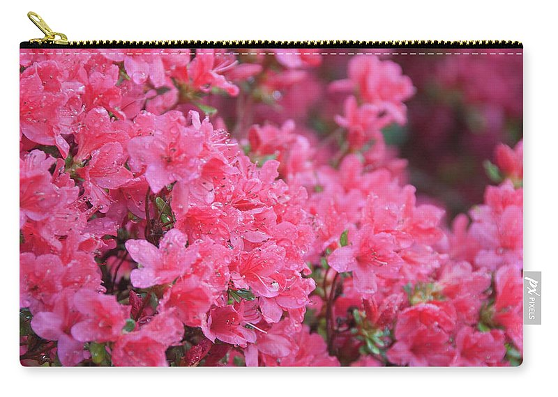 North Carolina Carry-all Pouch featuring the photograph Usa, North Carolina, Asheville, Azalea by Dkar Images