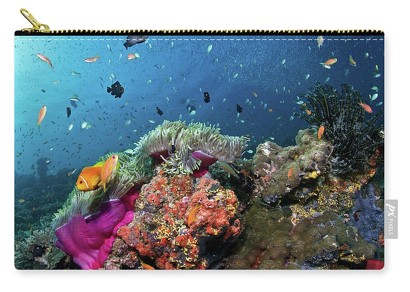 Underwater Carry-all Pouch featuring the photograph Vibrant Lives by Lea Lee