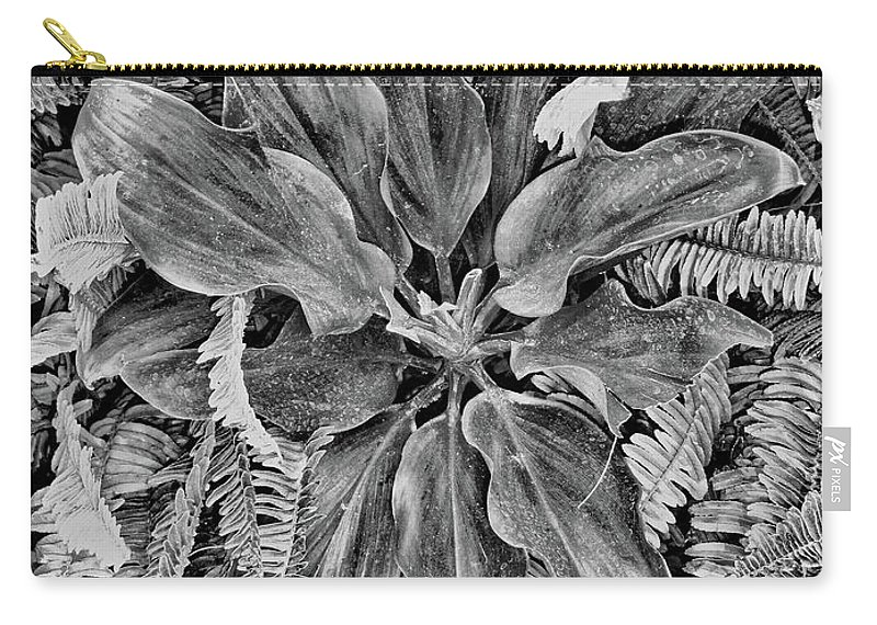 Waikiki Carry-all Pouch featuring the photograph Waikiki Floral Study 5 by Robert Meyers-Lussier