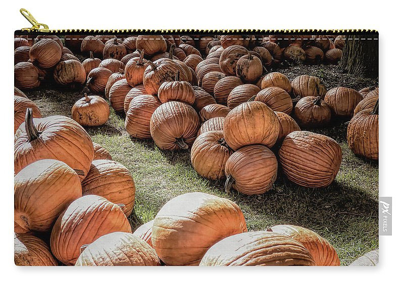 Fall Carry-all Pouch featuring the photograph Waiting For Love by Leslie Montgomery