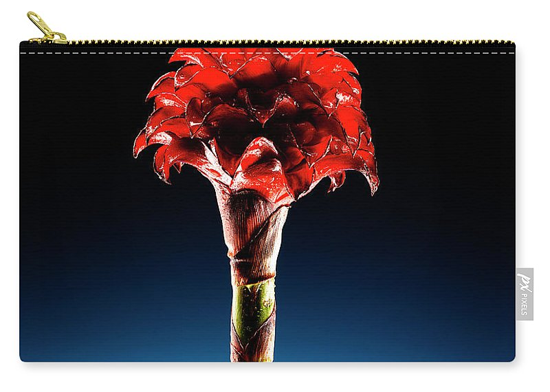 Single Object Carry-all Pouch featuring the photograph Wax Ginger Flower by Chris Stein
