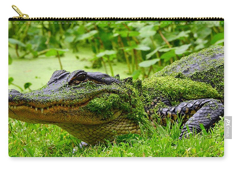 Alligator Carry-all Pouch featuring the photograph Wearin O' The Green by Charlotte Schafer