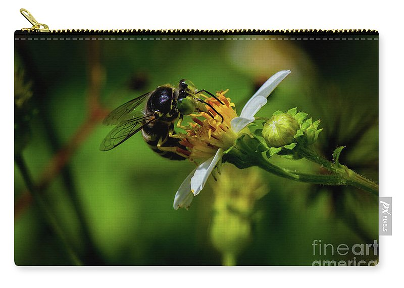 Insect Carry-all Pouch featuring the photograph Western Sand Wasp by Blair Howell