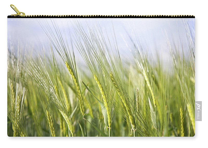Scenics Carry-all Pouch featuring the photograph Wheat Field by Peter Chadwick Lrps