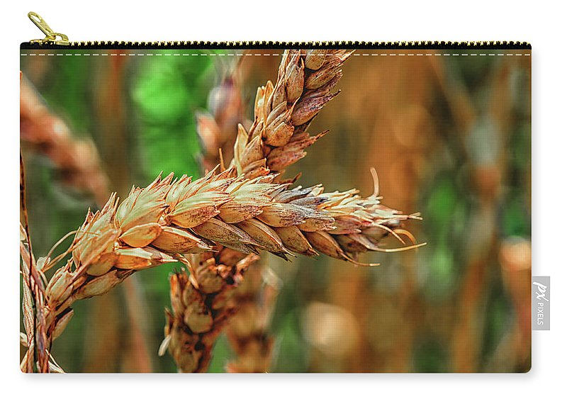 Harvest Carry-all Pouch featuring the photograph Wheat by Peter Moderdovsky