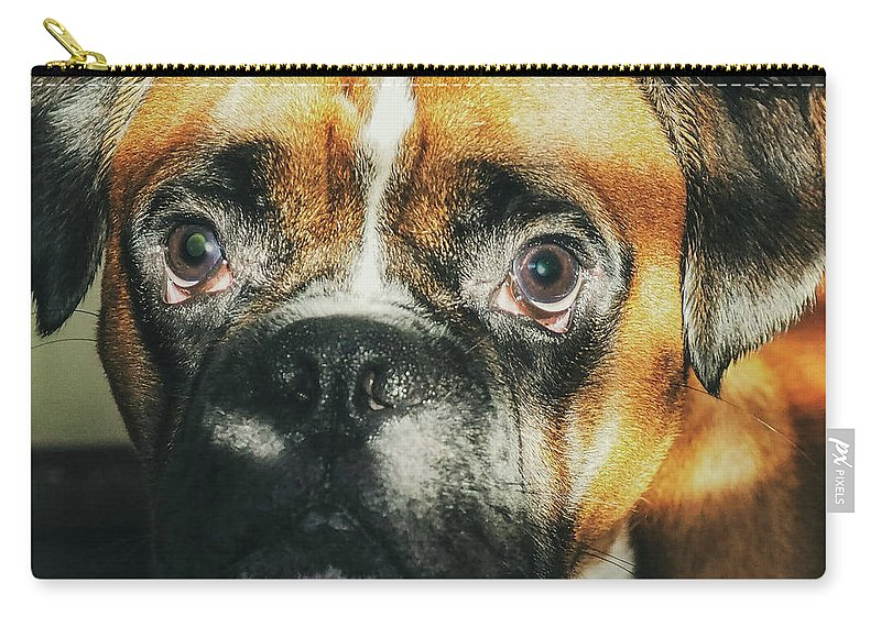 Dog Carry-all Pouch featuring the photograph Where'd Everybody Go by CWinslow Shafer