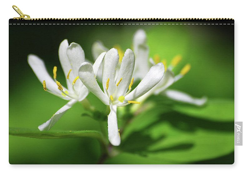 Honeysuckle Carry-all Pouch featuring the photograph White Honeysuckle Flowers by Christina Rollo