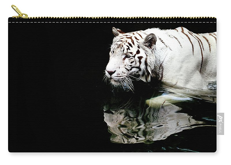 Three Quarter Length Carry-all Pouch featuring the photograph White Tiger In Water by Carlina Teteris