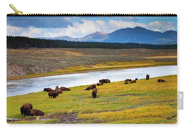 Scenics Carry-all Pouch featuring the photograph Wild Bison Roam Free Beneath Mountains by Jamesbrey