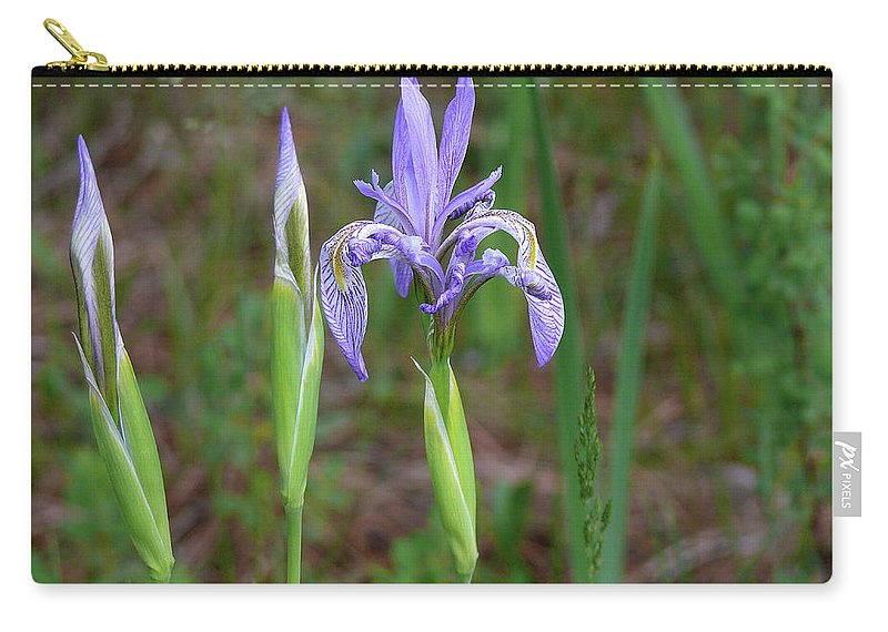 Landscape Carry-all Pouch featuring the photograph Wild Iris by Clair Flatt