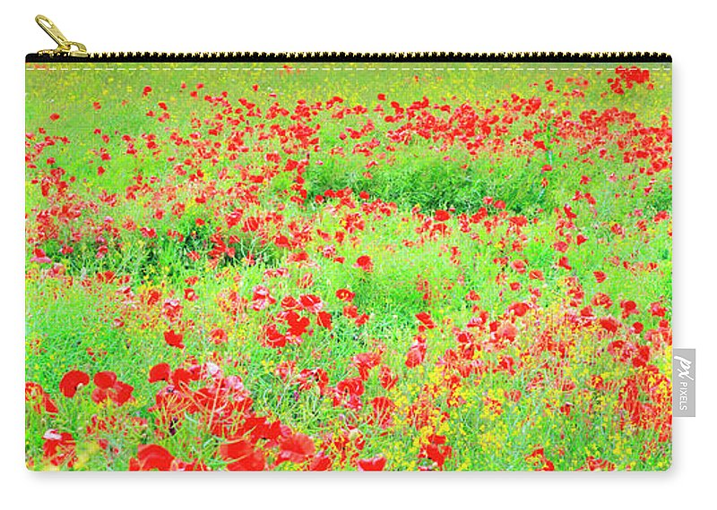 Scenics Carry-all Pouch featuring the photograph Wild Poppies, Pembrokeshire, Wales by Chris Ladd