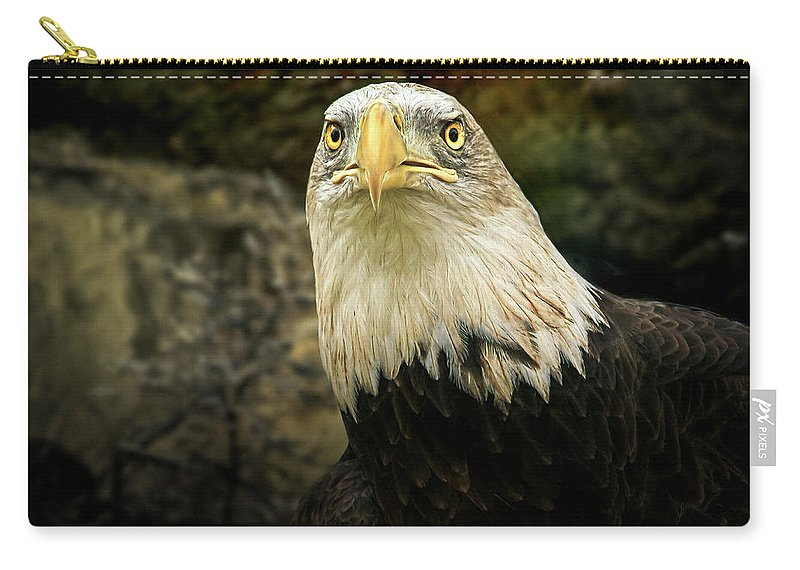 Eagle Carry-all Pouch featuring the photograph Winter Eagle by Bob Orsillo