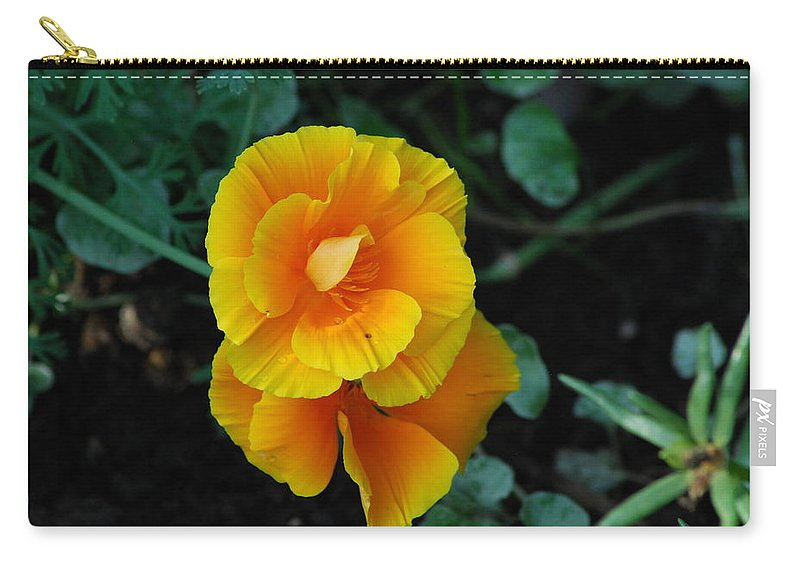 Scenic Carry-all Pouch featuring the photograph Yellow Wild Flowers by Ee Photography