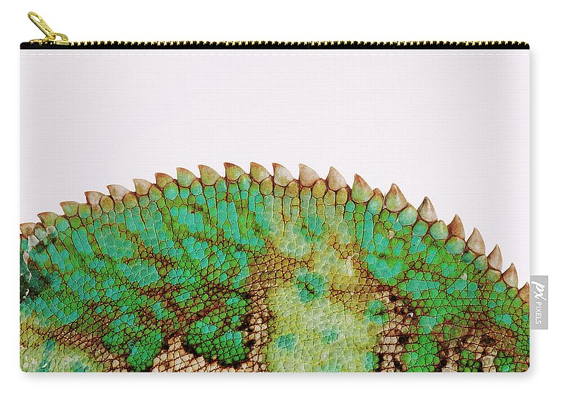 White Background Carry-all Pouch featuring the photograph Yemen Chameleon, Close-up Of Skin by Martin Harvey