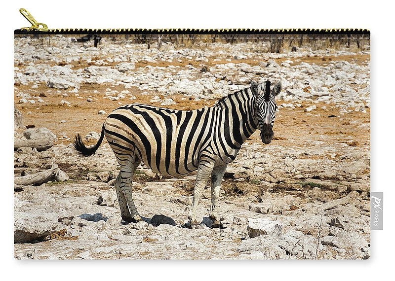 Animal Themes Carry-all Pouch featuring the photograph Zebra And White Rocks by Taken By Chrbhm