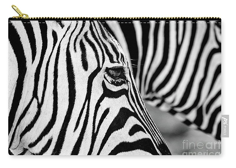 Animal Themes Carry-all Pouch featuring the photograph Zebra Stripes by Chris Kolaczan