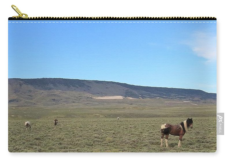 Pinto Carry-all Pouch featuring the photograph Zeus And Family by Christi Chapman