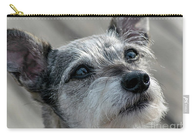 Carry-all Pouch featuring the photograph Zeuss by Edward Love