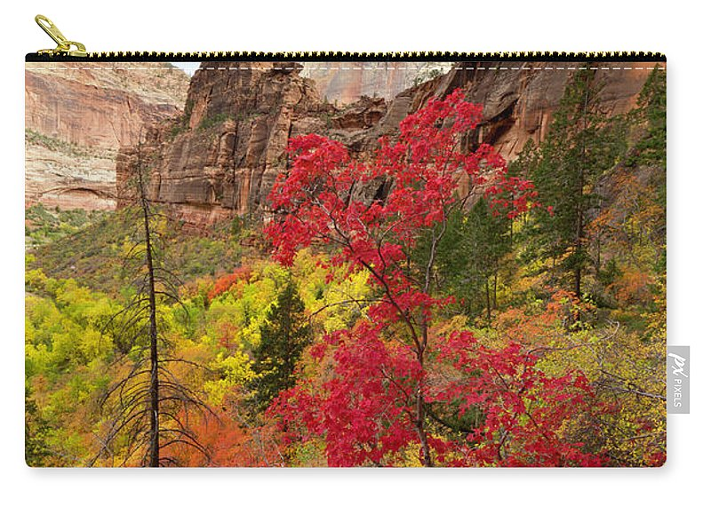 Scenics Carry-all Pouch featuring the photograph Zion National Park View by Justinreznick