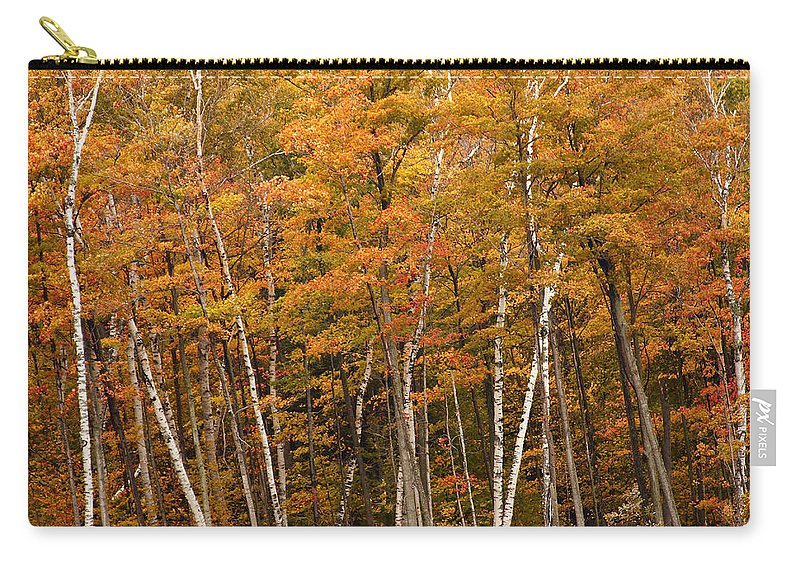 3scape Carry-all Pouch featuring the photograph Autumn Glory by Adam Romanowicz
