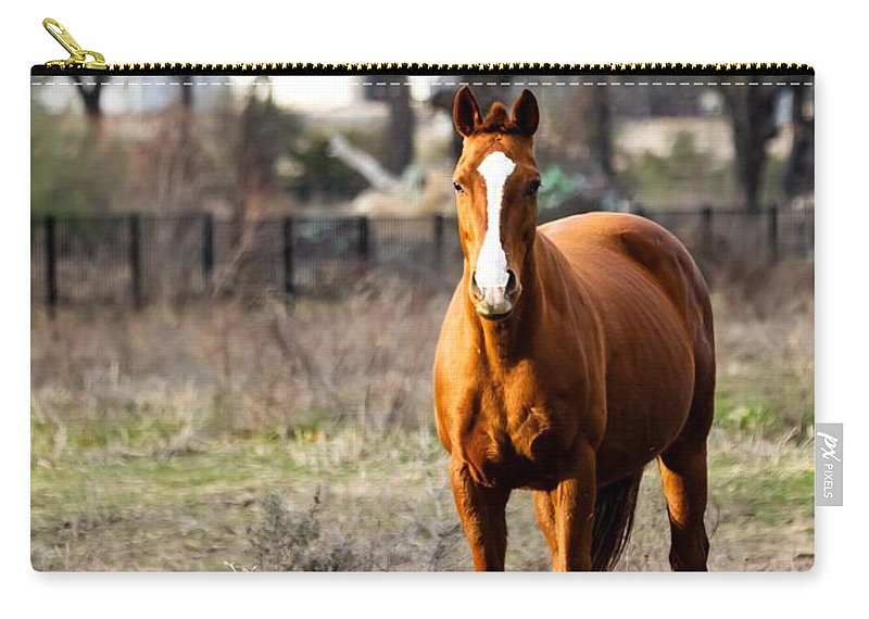 Horse Carry-all Pouch featuring the photograph Bay Horse 3 by C Winslow Shafer