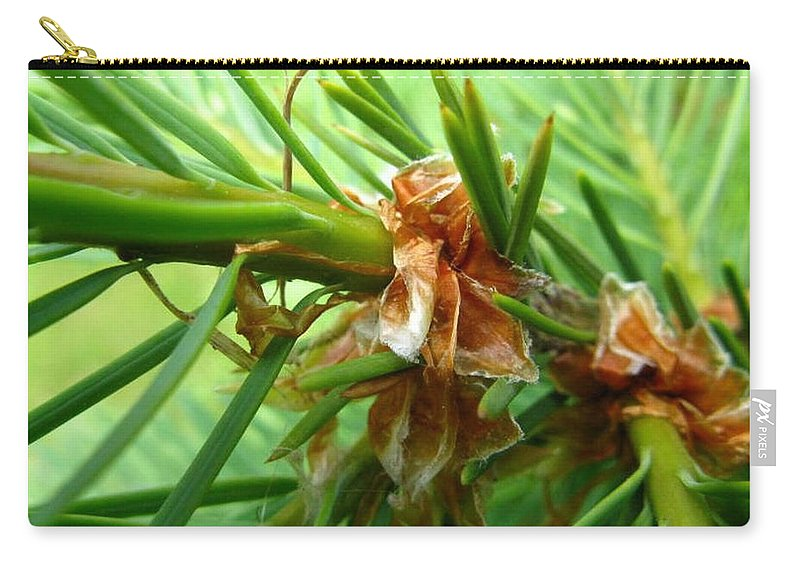 Tree Carry-all Pouch featuring the photograph Branch of Pine by Rhonda Barrett