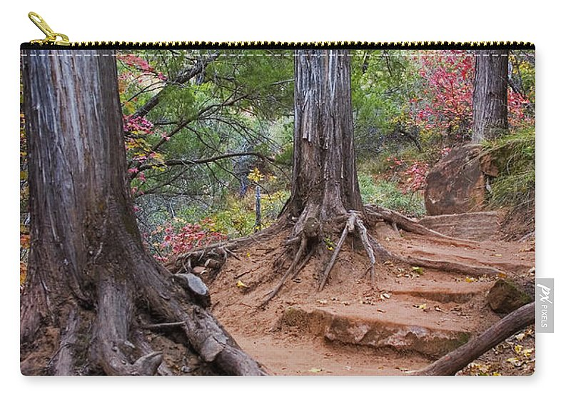3scape Carry-all Pouch featuring the photograph Colors of Zion by Adam Romanowicz