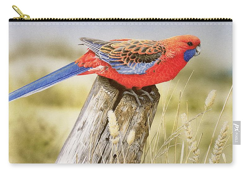 Bird Carry-all Pouch featuring the painting Colour and Light - Crimson Rosella by Frances McMahon