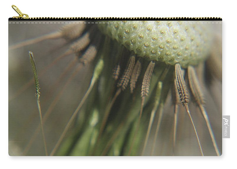 Nature Carry-all Pouch featuring the photograph Dandelion by Holly Morris