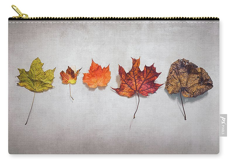 Autumn Carry-all Pouch featuring the photograph Five Autumn Leaves by Scott Norris