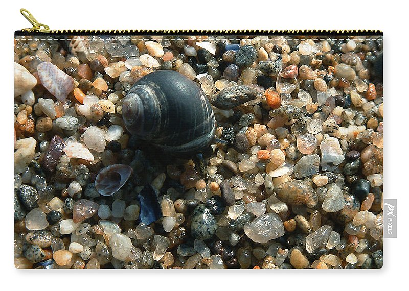 Shells Carry-all Pouch featuring the photograph In a Grain of Sand by RC DeWinter
