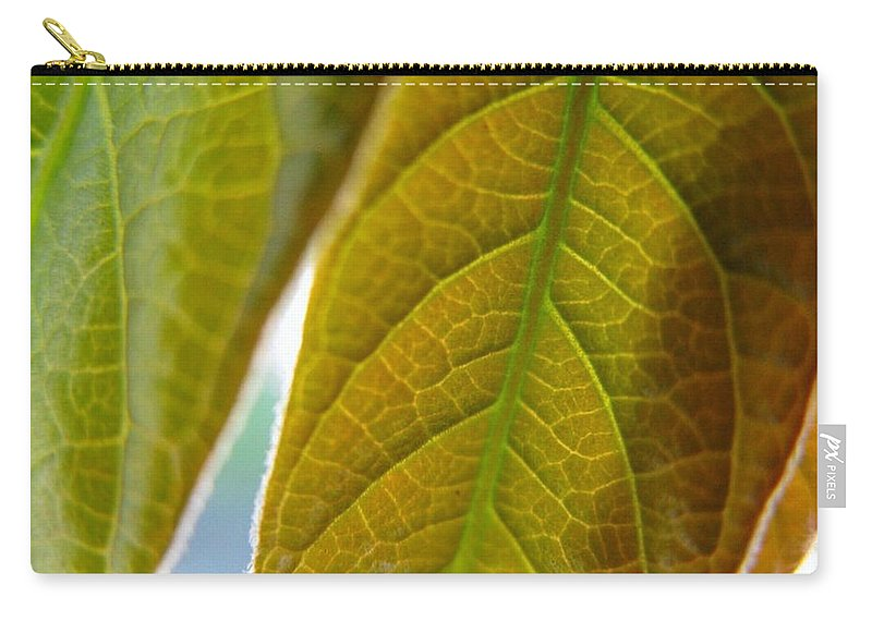 Leaves Carry-all Pouch featuring the photograph Interesting Leaves by Rhonda Barrett