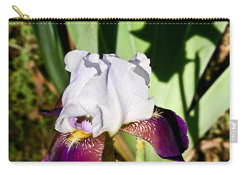 Iris Carry-all Pouch featuring the photograph Iris and Shadow by Douglas Barnett